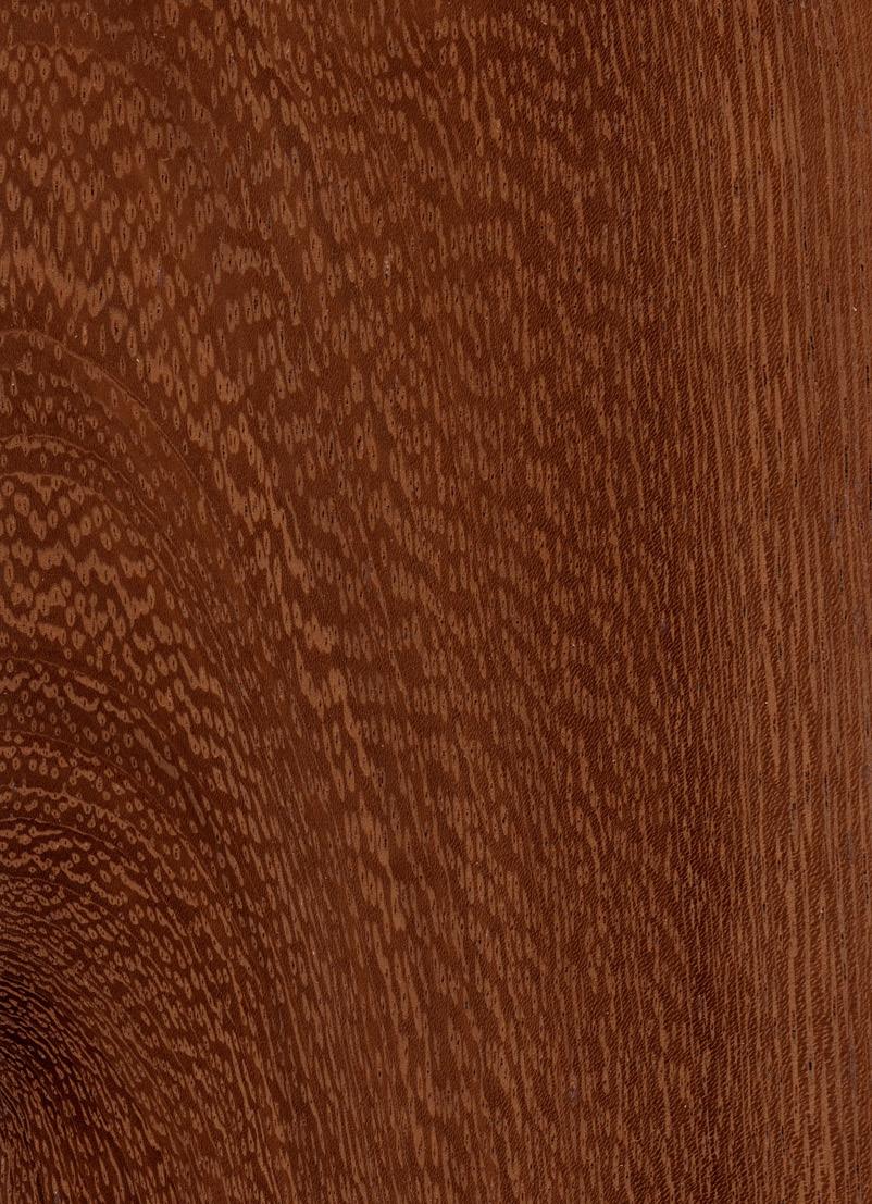 Sehr Afzelia - Merkmale & Eigenschaften - Holz vom Fach UT31