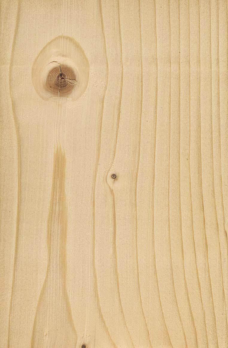 Fichte Merkmale Eigenschaften Holz Vom Fach