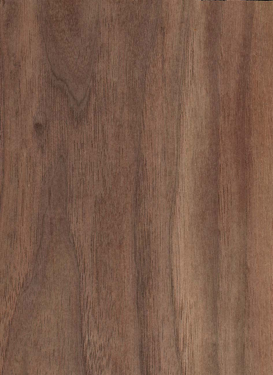 Beliebt Nussbaum - Merkmale & Eigenschaften - Holz vom Fach FD85