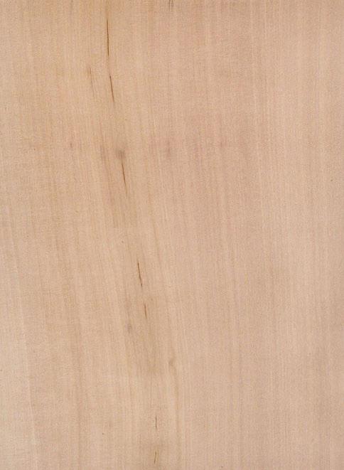 Rohling Furnier gefärbt und verleimt kanadischer Ahorn, Sperrholz bunt