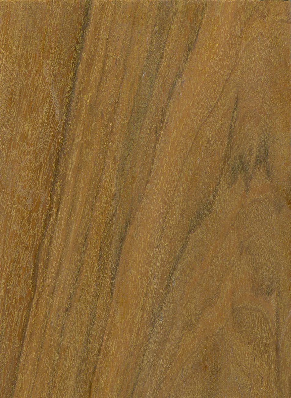 Ipe Merkmale Eigenschaften Holz Vom Fach