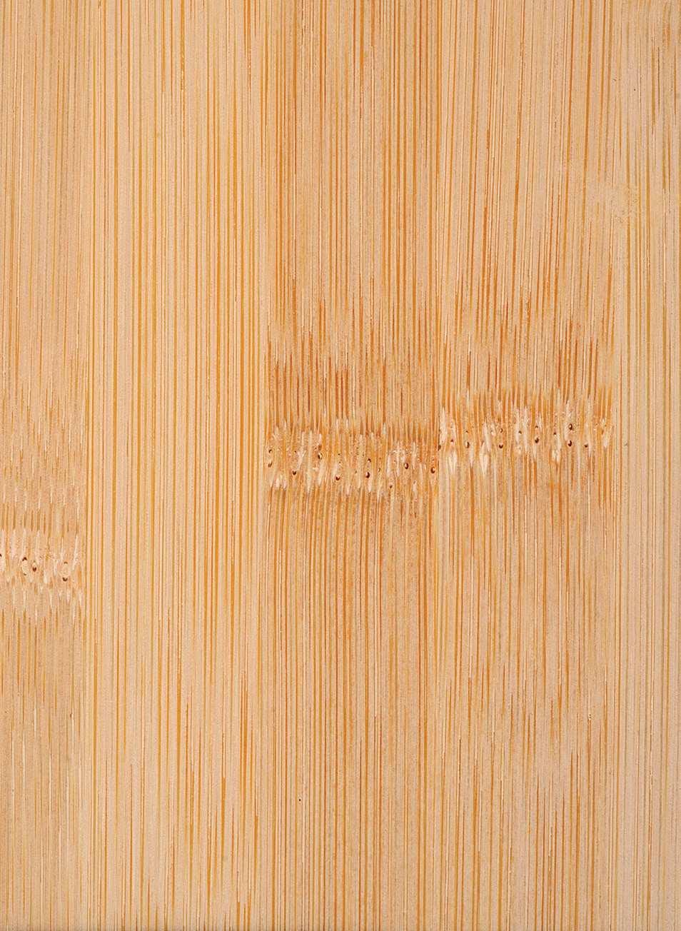 Super Bambus - Merkmale & Eigenschaften - Holz vom Fach NN97