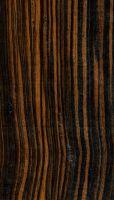 Farbstreifiges Ebenholz (Diospyros celebica): radiale Oberfläche (natürliche Größe)