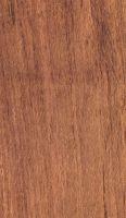 Wallaba (Eperua falcata): Radiale Oberfläche (natürliche Größe) frisch gehobelt