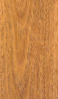 Cerejeira (Amburana spp.) – tangentiale Oberfläche (natürliche Größe)