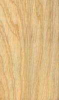 Ceiba (Ceiba pentandra) – tangentiale Oberfläche (natürliche Größe)