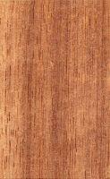 Cambará (Erisma uncinnatum) – radiale Oberfläche (natürliche Größe)