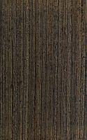 Wengé (Millettia laurentii): radiale Oberfläche (natürliche Größe)