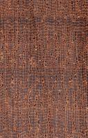 Makoré (Tieghemella heckelii) – Querschnitt 10x