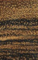 Barcino (Cordia elaeagnoides) – Querschnitt ca. 10x
