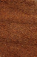 Afrormosia (Pericopsis elata) – Querschnitt 10-fach vergrößert