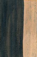 Schwarzes Ebenholz (Diospyros crassiflora): radiale Oberfläche (natürliche Größe)