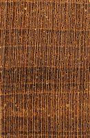 Agba (Gossweilerodendron balsamiferum) – Querschnitt (ca. 10x)