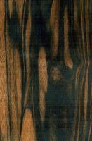 Farbstreifiges Ebenholz (Diospyros celebica): tangentiale Oberfläche (natürliche Größe)