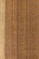 Makoré (Tieghemella heckelii) – radiale Oberfläche (natürliche Größe)