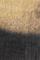 Schwarzes Ebenholz (Diospyros crassiflora): Querschnitt (ca. 12x)