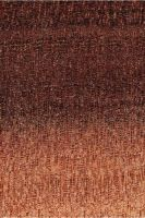 Chicozapote (Manilkara zapota): Querschnitt (ca. 12x)