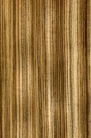 Zebrano (Microberlinia spp.): Radiale Oberfläche (natürliche Größe)