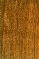 Afrormosia (Pericopsis elata) – radiale Oberfläche