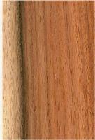 Machiche (Lonchocarpus cf. castilloi): Radiale Oberfläche (natürliche Größe)