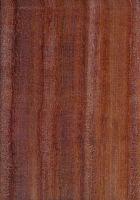 Satiné (Brosimum rubescens) – radiale Oberfläche (natürliche Größe)