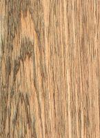 Merpauh (Swintonia sp.): Tangentiale Oberfläche (natürliche Größe)