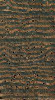 Wengé (Millettia laurentii): Tangentiale Oberfläche (natürliche Größe)