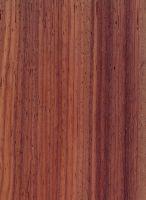 Padouk (Pterocarpus soyauxii) – Radiale Oberfläche (nat. Größe)