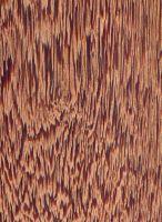Andira (Andira spp.): Tangentiale Oberfläche (natürliche Größe)