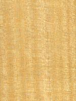 Gelbes Meranti (Shorea sp.): Radiale Oberfläche (natürliche Größe)
