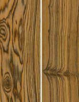 Barcino (Cordia elaeagnoides) – tangentiale und radiale Oberfläche (natürliche Größe)