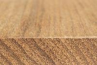Teak (Tectona grandis): Querschnitt und tangentiale Oberfläche (natürliche Größe)