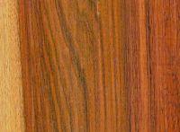 Ramón (Brosimum alicastrum): Radiale Oberfläche (Ramón colorado), natürliche Größe