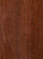 Azobé, (Lophira alata.): Tangentiale Oberfläche (natürliche Größe)