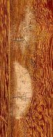 Kempas (Koompassia malaccensis): Radiale Oberfläche, eingeschlossenes Rindengewebe (natürliche Größe)
