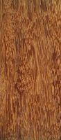 Kempas (Koompassia malaccensis): Radiale Oberfläche (natürliche Größe)