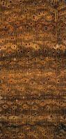 Cerejeira (Amburana spp.) – Querschnitt (ca. 10x)